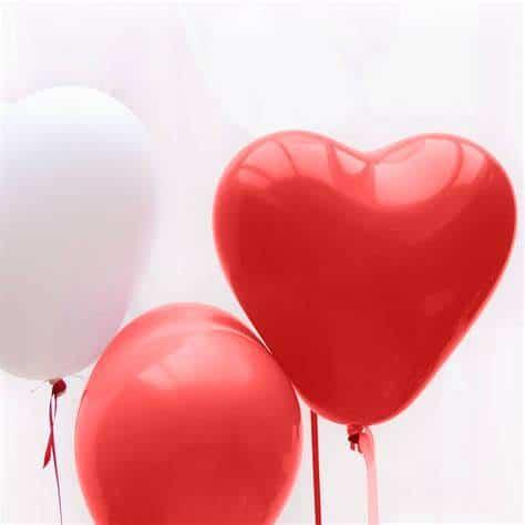 Valentijnshoots